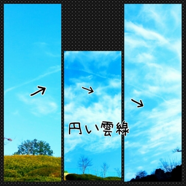 PhotoGrid_1425609207462.jpg