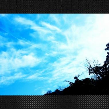 PhotoGrid_1425772428846.jpg