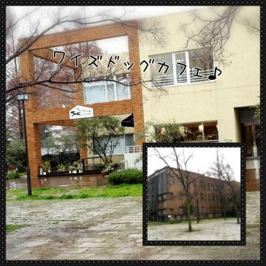 PhotoGrid_1425874904560.jpg