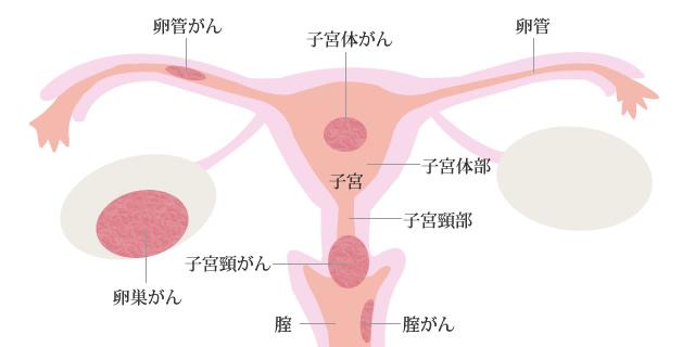 cervical_img01.jpg