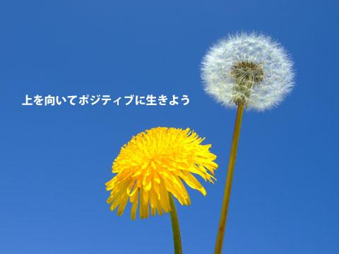 ph_158692.jpg