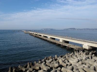 渚の駅たてやま 夕日桟橋