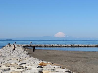 館山の海岸より富士山