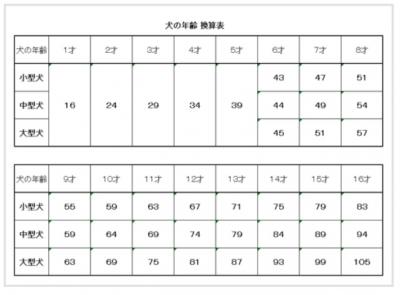 犬の年齢表