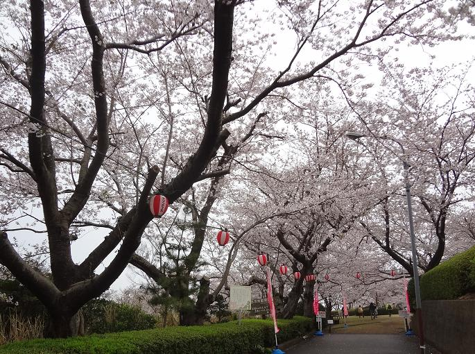 20150403walk_5.jpg