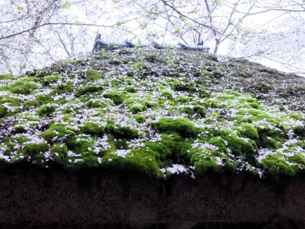 水車小屋の屋根