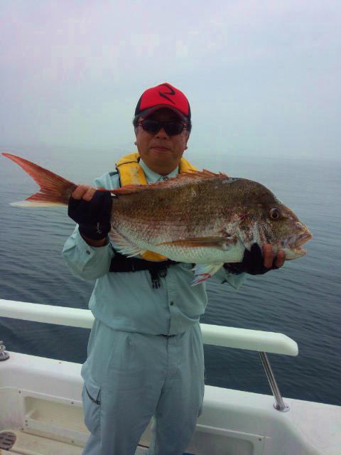 真鯛77cm