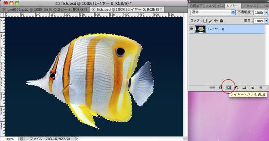 fish002