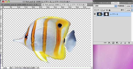 fish003