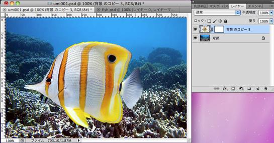 fish005