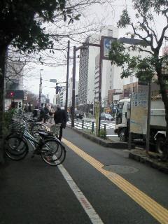 NEC_2764.jpg