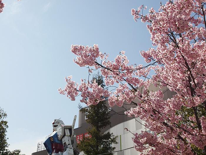 2015桜ガンダム 027