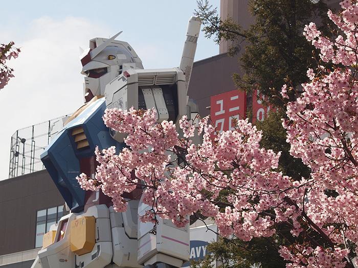 2015桜ガンダム 040