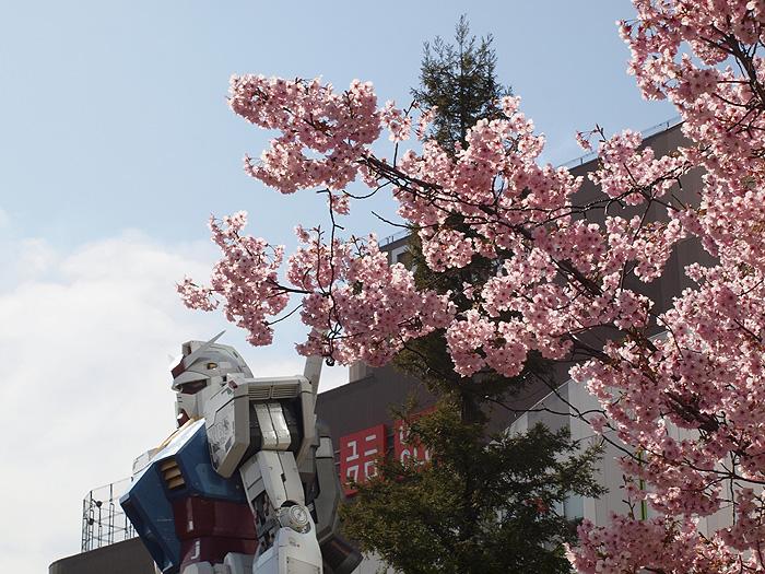 2015桜ガンダム 046