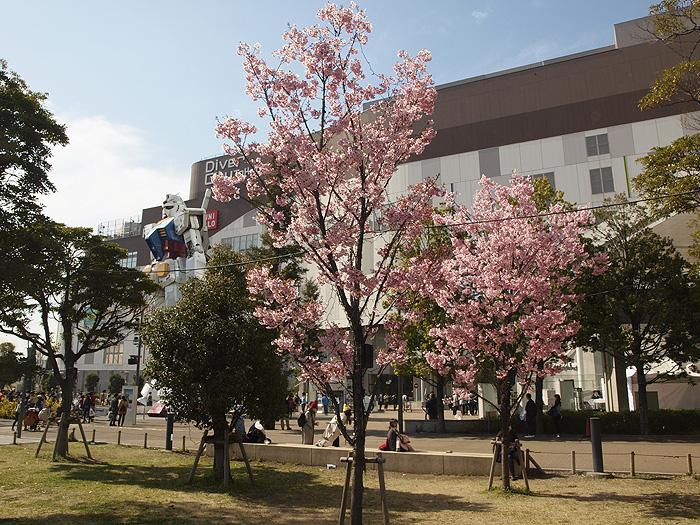 2015桜ガンダム 049