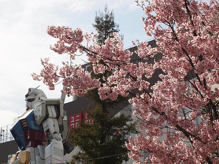 2015桜ガンダム 062