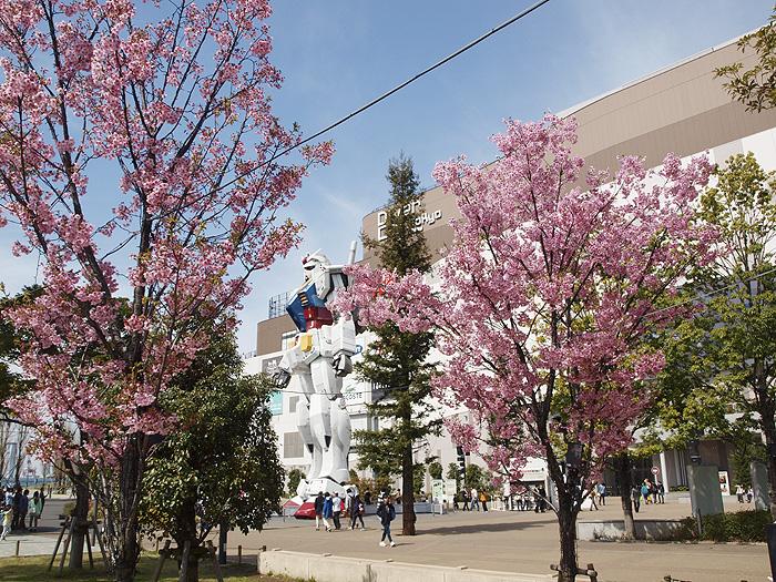 2015桜ガンダム 094