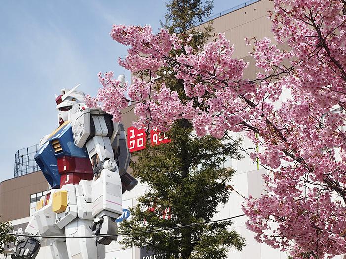 2015桜ガンダム 096