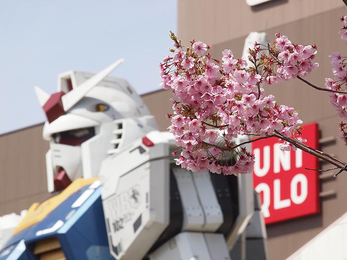 2015桜ガンダム 107
