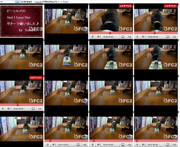 FC2動画の視聴制限を回避01-21-41-490