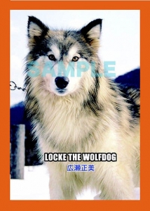 wolfdoggg.jpg