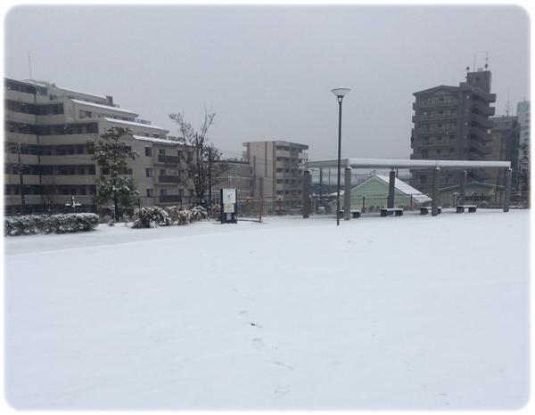 この冬、初積雪03