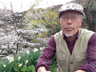 あきる野市桜0