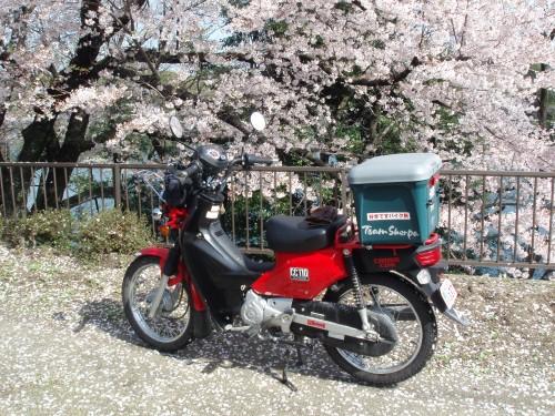 P4040001 (Custom)