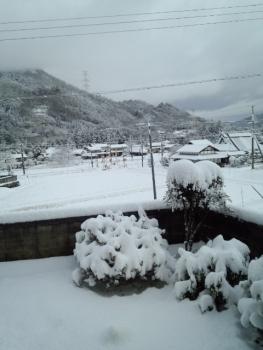 20141218雪