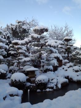 20141218雪4