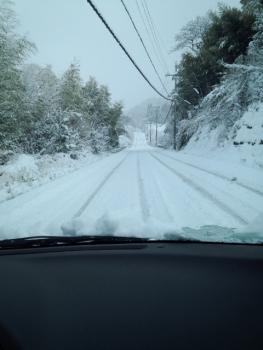 20141218雪5