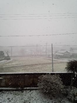 20150101雪