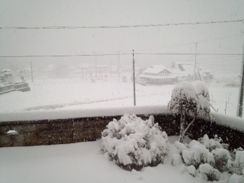 20150101大雪