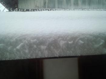 20150102大雪3