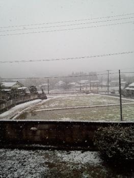 20150117雪
