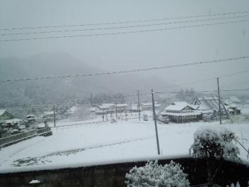 20150210雪