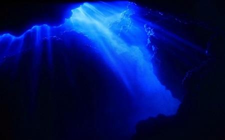 神秘の世界~深海・・・