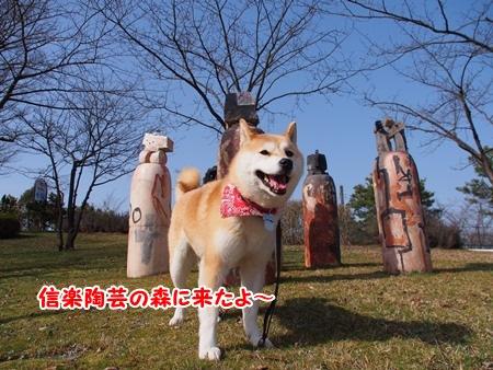 信楽陶芸の森~
