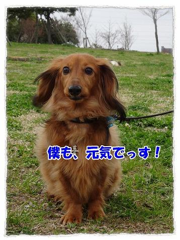 2015_03_30_02.jpg