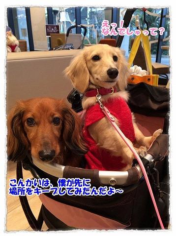 2015_04_14_01.jpg