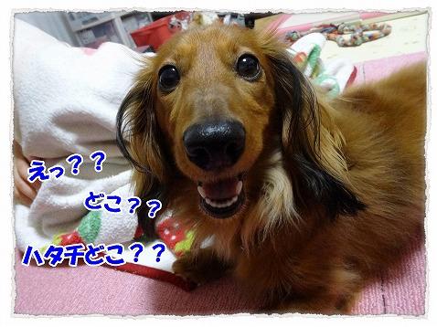 2015_04_15_03.jpg