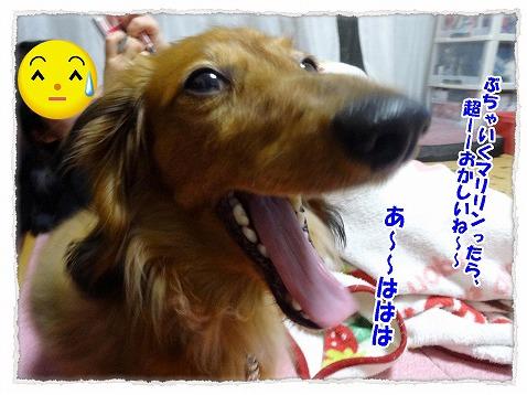 2015_04_17_03.jpg