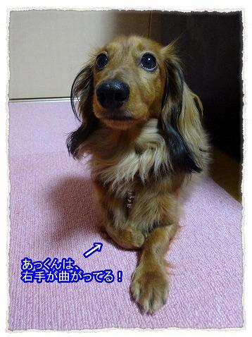 2015_04_20_03.jpg