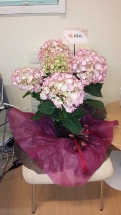 木原さんの開業祝いのお花
