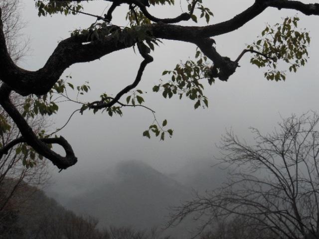 景色①(640)