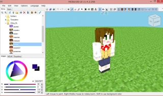 MCSikn3D.jpg