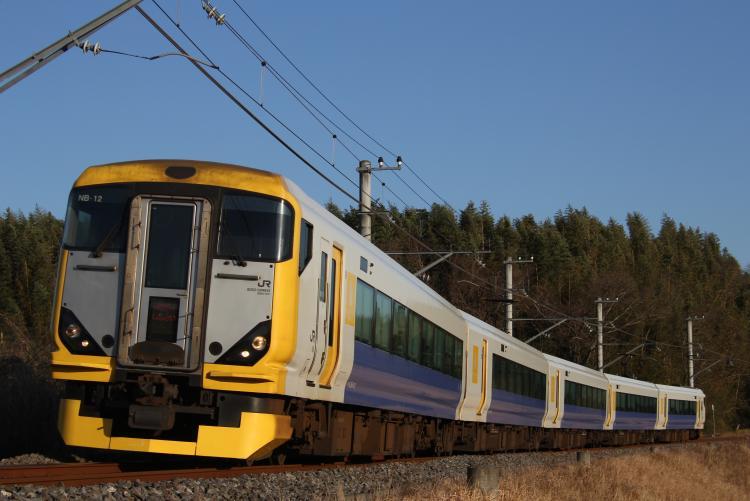 E257系500番台 NB-12 しおさい12号