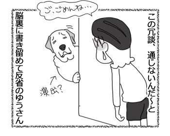 羊の国のラブラドール絵日記シニア!!「通じない冗談」5
