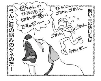羊の国のラブラドール絵日記シニア!!「抜け毛の季節」4