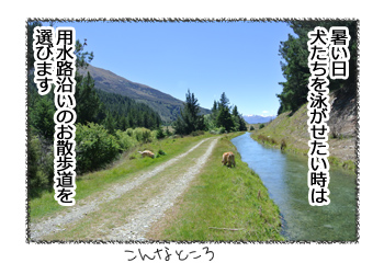 羊の国のラブラドール絵日記シニア!!「水を得すぎたラブラドール」1